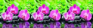 Lid_fartuk_abs_orchid_1