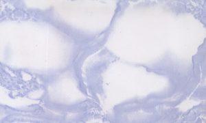 VladEk_ecran_Standard_marble_light_blue