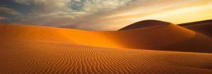VladEk_ecran_Standard_plus_desert