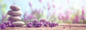 VladEk_ecran_Standard_plus_lavander