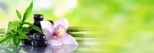 VladEk_ecran_Standard_plus_orchid_white