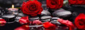 VladEk_ecran_Standard_plus_roses