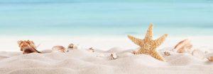 VladEk_ecran_Standard_plus_sandy_shore